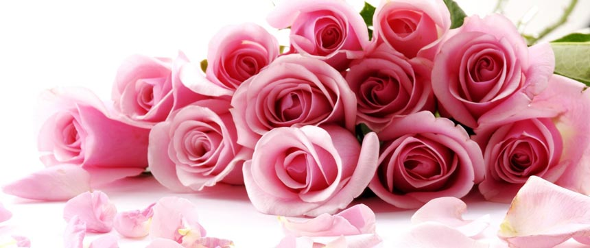 What Do The Valentineu0027s Day Special Flowers Actually Mean U0026 Convey To You?