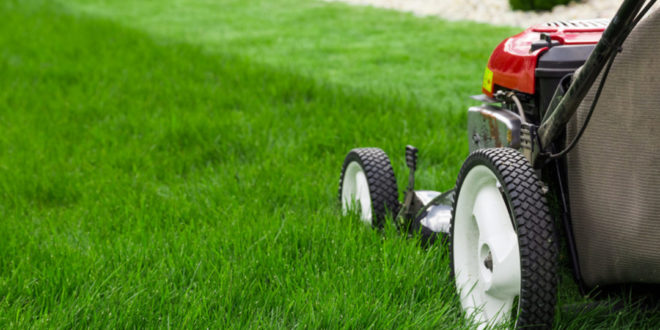 Why Should You Hire Lawn Care Services?