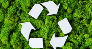 Recycling Is Trendy! The Future of Recycled Products