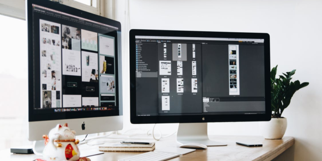 web design basics for business