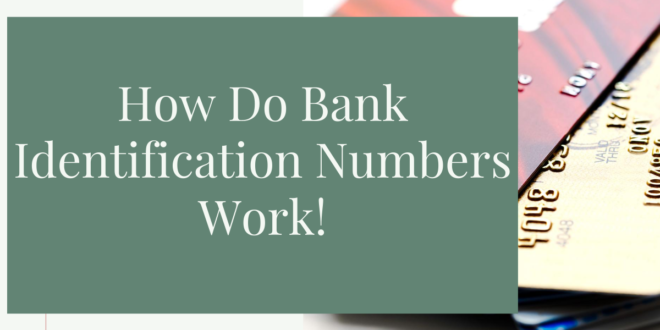 How Do Bank Identification Numbers Work? Top 3 BIN Services
