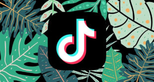 Tik Tok is a delicate matter. The social network from China came for the heads of Instagram and YouTube