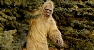 <strong>Who is bigfoot and is it real? | History of Bigfoot</strong>
