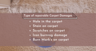 <strong>Should you repair your carpet or replace it?</strong>