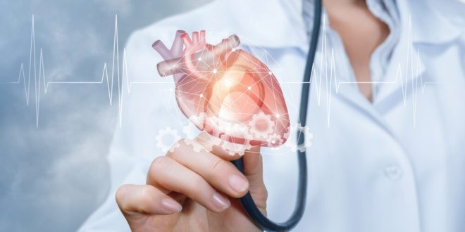 7 Amazing Tips to Prevent Heart Disease