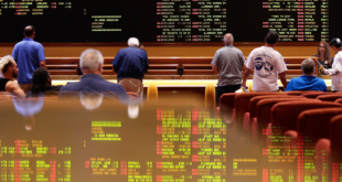 <strong>What Has Driven the Betting Industry Forward Over the Last Decade?</strong>