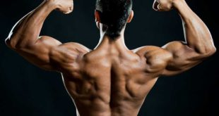 <strong>What are Androgenic and Androgens Steroids?</strong>