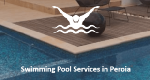 Top reasons to hire a professional swimming pool services