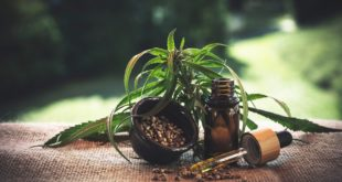 <strong>CBD Oil – What You Need To Know About?</strong>