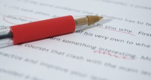 How to choose the best essay writer?