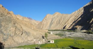 <strong>All you need to know about The Markha valley trek in Ladakh</strong>