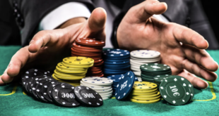 What are the 3 reasons to play online gambling?