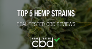 Top 5 Tested Hemp Strains for 2020 Round-Up: Best of Real Tested CBD