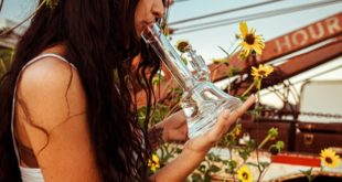 6 Best Methods to Keep Your Bong Safe