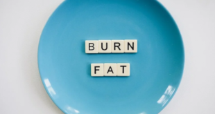 What is Fat Burning Machine & How Can it Help Me Lose Weight?