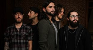 INTERVIEW: The Brown Goose