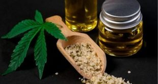 Top 6 Reasons Why Investing in CBD Products will Make You Rich.