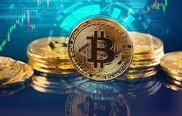 How to profit off bitcoin trading in the volatile market