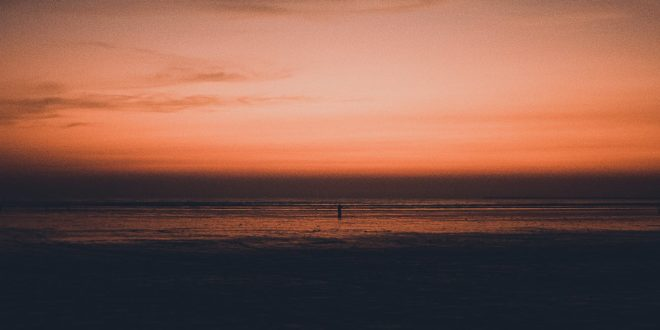 silhouette photo of a man walking on seashore during sunset