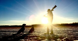 Breaking Common Myths About Hunting