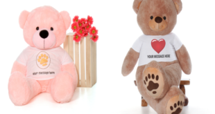 Why teddy bears are important for your child's growing up?