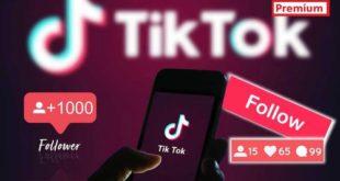 Ways to get free TikTok followers