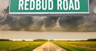 SINGLE REVIEW: Redbud Road by Dan Ashley