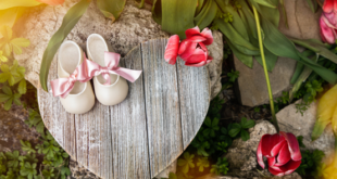 4 Amazing reasons Why Soft Sole Baby Shoes Are a Must for Your Little One