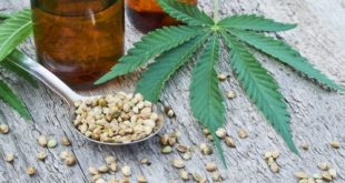 Why CBD is Becoming Popular among Senior Citizens