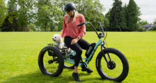 What is an electric trike and where to buy it in Canada?