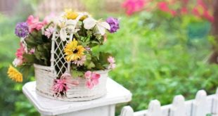 How to Choose the Right Wooden Flowers for Your Event?