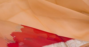How to Identify Pure Organza Sarees Online