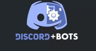 What are the Discord bots for your server?