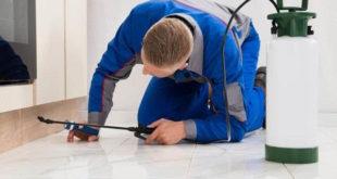 Pest control Treatment Methods