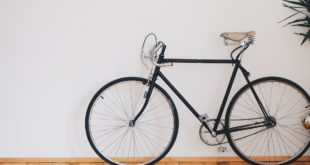 Single Speed Bicycles: Everything You Need to Know About Them