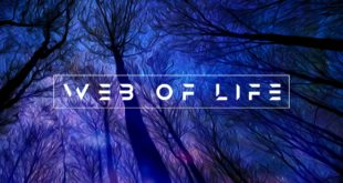 SINGLE REVIEW: Web of Life by Marc Summer